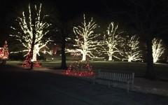 """A Longwood Garden Christmas"""