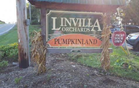 Fun in the Fall at Linvilla Orchards
