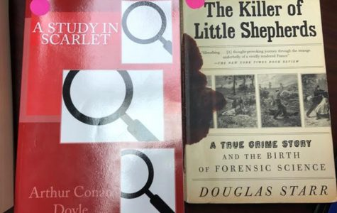 Victorian Crime: A New Addition to the Curriculum Guide