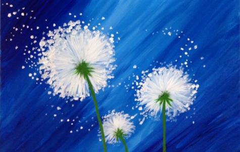 Paint A Wish