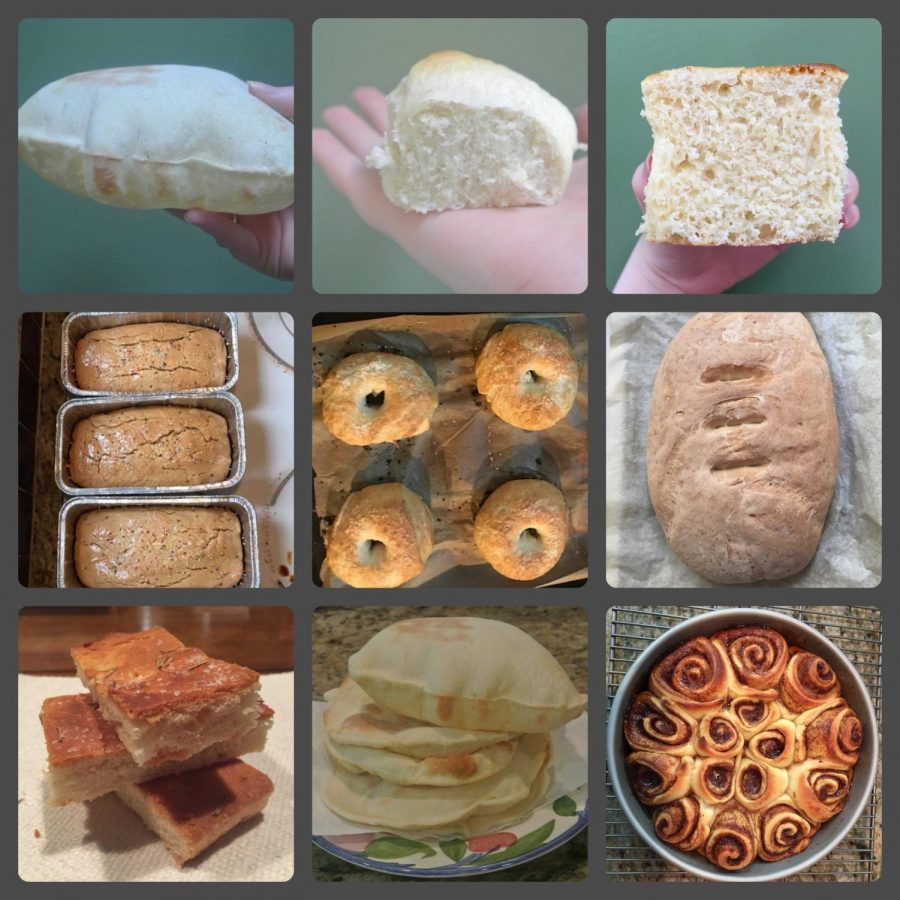 Images+of+some+of+the+recipes+I%E2%80%99ve+made+using+my+yeast.+Beginning+with+the+top+left+image%2C+I+have+made+pita+bread%2C+rolls%2C+kolaches+%28Polish+danishes%29%2C+Easter+Bread+%28anise-flavored+sweet+bread%29%2C+bagels%2C+Italian+bread%2C+focaccia+bread%2C+more+pita%2C+and+cinnamon+rolls.