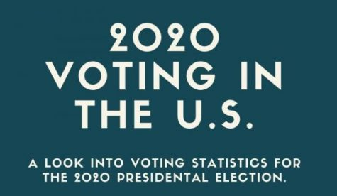 2020 Voting Statistics including voting numbers and demographics for Americans who voted.