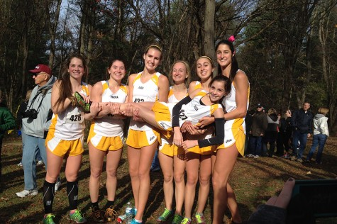Cross Country Wins State Meet