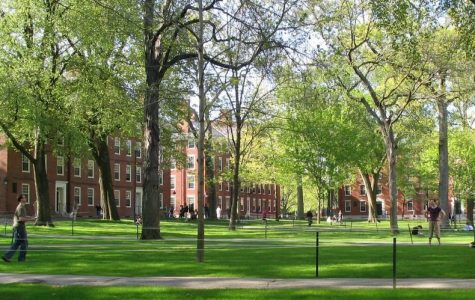 A picture of Harvard Yard.