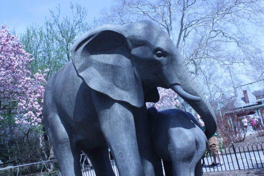 Art+of+the+Zoo