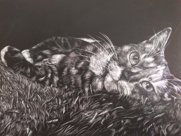 %22Shelly%22%0AGao%27s+scratchboard+of+a+cat+that+was+awarded+the+Gold+Key+and+an+American+Vision+nomination