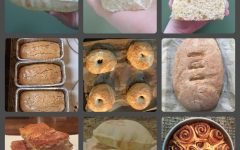 Images of some of the recipes I've made using my yeast. Beginning with the top left image, I have made pita bread, rolls, kolaches (Polish danishes), Easter Bread (anise-flavored sweet bread), bagels, Italian bread, focaccia bread, more pita, and cinnamon rolls.